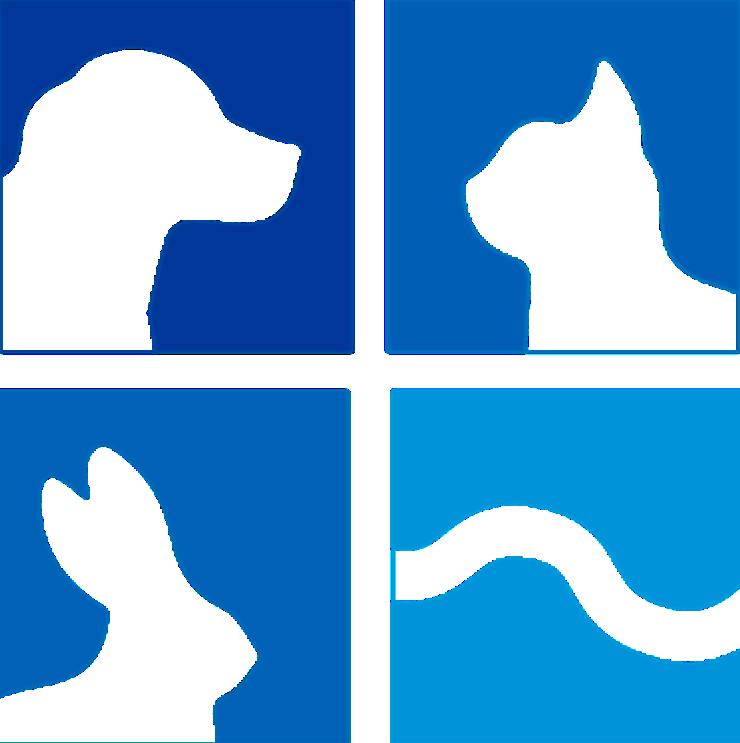 Tierarzt Illingen Saarland Notdienst Tierärzte Hund Katze Reptilien